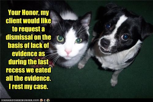 crime,evidence,innocent,loldogs,trial