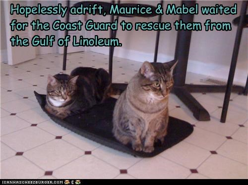 Hopelessly adrift, Maurice & Mabel waited for the Coast Guard to rescue them from the Gulf of Linoleum.