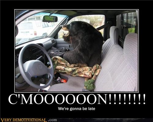 anthropomorphizing,Automobiles,bears,being late,cars,hilarious,punctuality