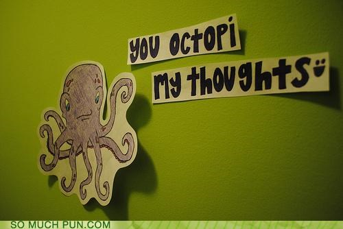 animals love octopus picture puns - 3534642176
