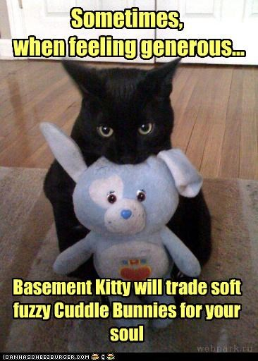 basement cat nice soul stuffed animals - 3536792832