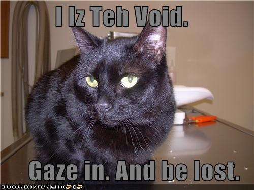 I Iz Teh Void.  Gaze in. And be lost.