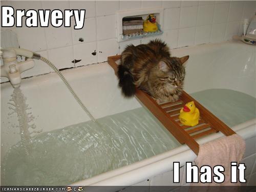 bath,brave,water