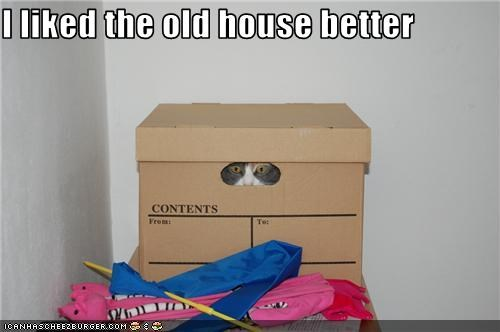box do not want moving - 3537594368