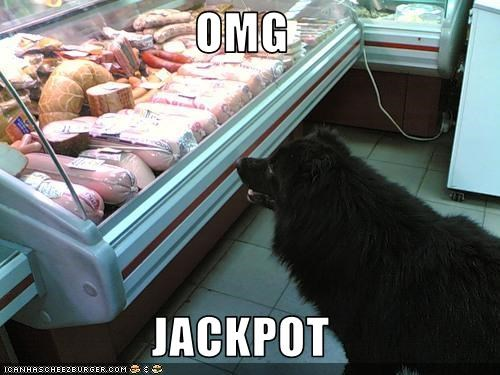 excited happy heaven jackpot meat meat aisle noms surprised whatbreed - 3538846208