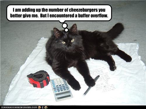 Cheezburger Image 3539840512