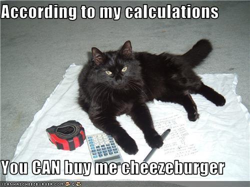 Cheezburger Image 3539958528