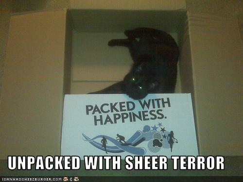 box scary - 3540145408