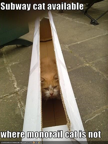 box monorail cat subway cat - 3540268544