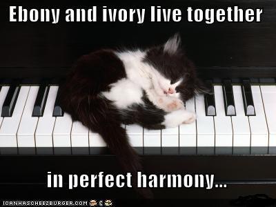 Ebony and ivory living in perfect harmony
