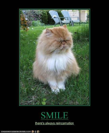 SMILE there's always reincarnation