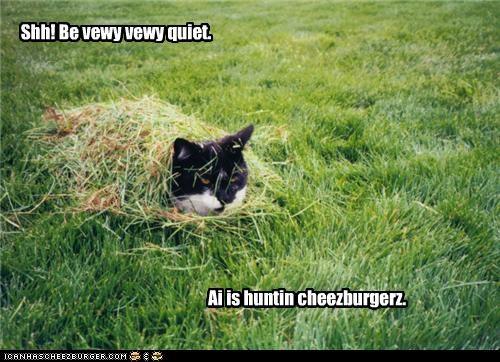 Cheezburger Image 3542670592