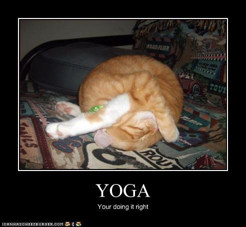 YOGA Your doing it right