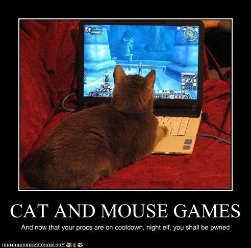 CAT AND MOUSE GAMES And now that your procs are on cooldown, night elf, you shall be pwned