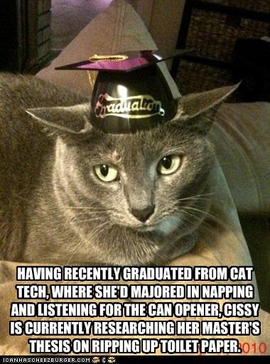 HAVING RECENTLY GRADUATED FROM CAT TECH, WHERE SHE'D MAJORED IN NAPPING AND LISTENING FOR THE CAN OPENER, CISSY IS CURRENTLY RESEARCHING HER MASTER'S THESIS ON RIPPING UP TOILET PAPER.