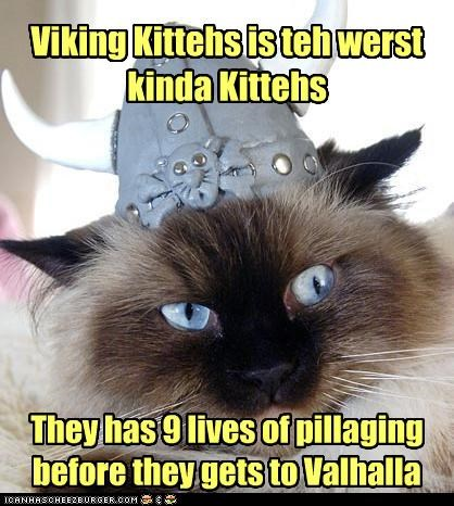 Viking Kittehs is teh werst kinda Kittehs They has 9 lives of pillaging before they gets to Valhalla