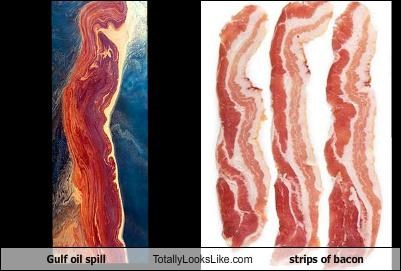 bacon food news oil oil slick spill