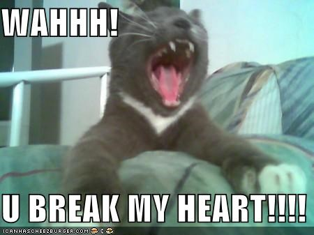 Wahhh U Break My Heart Cheezburger Funny Memes Funny Pictures