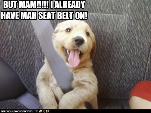 BUT MAM!!!!! I ALREADY HAVE MAH SEAT BELT ON!