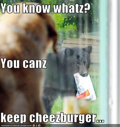 Cheezburger Image 3550780416