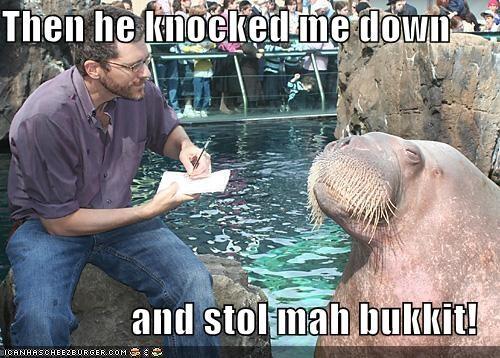 bukkit,lolrus,Sad,stole