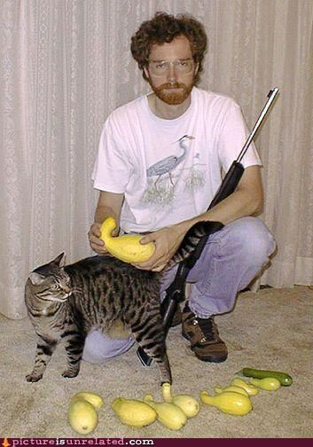 awesome cat dude food guns vegetables wtf - 3552181504