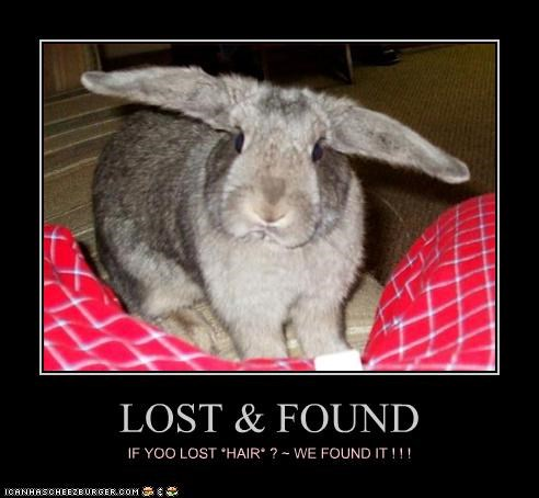 LOST & FOUND IF YOO LOST *HAIR* ? ~ WE FOUND IT ! ! !