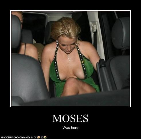 MOSES Was here
