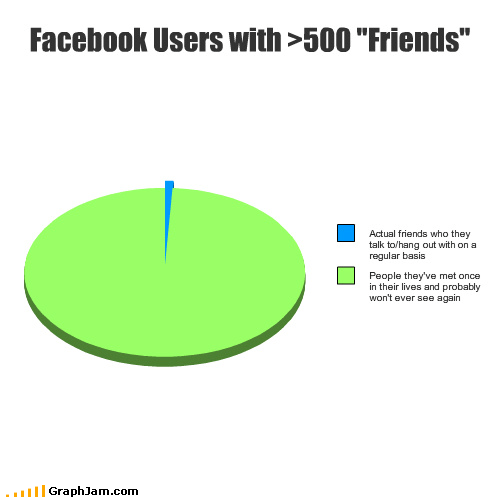 facebook fake friends internet met Pie Chart