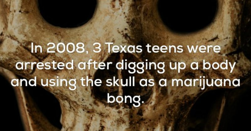 WTF Disturbing Facts That Will Make Your Skin Crawl | 2008, 3 Texas teens were arrested after digging up body and using skull as marijuana. bong.