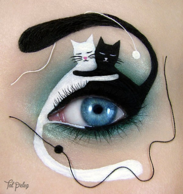 cats make up