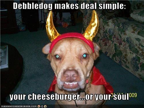 Cheezburger Image 3559047168