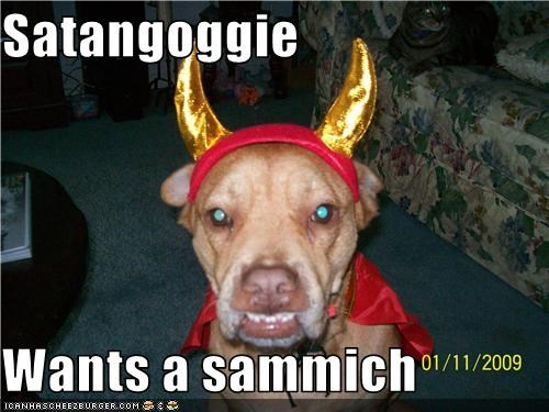 Cheezburger Image 3559350528