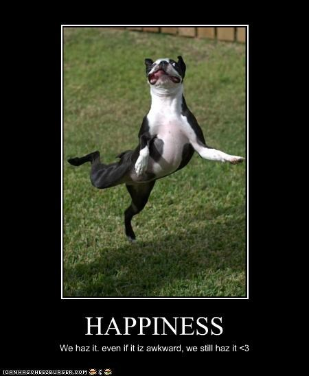 HAPPINESS We haz it. even if it iz awkward, we still haz it <3