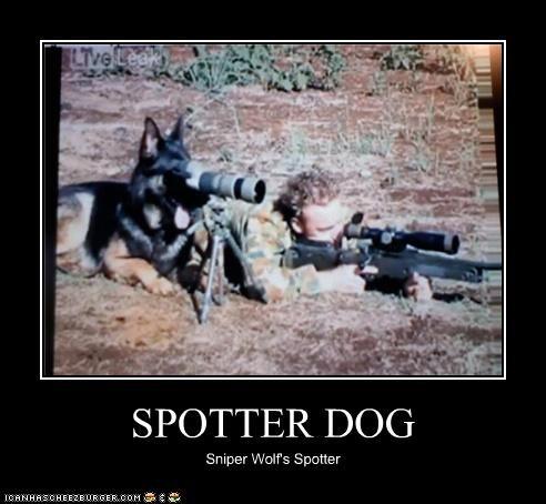 SPOTTER DOG Sniper Wolf's Spotter