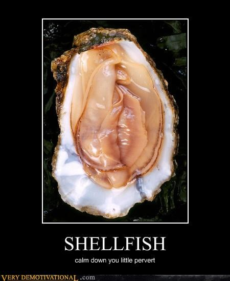 SHELLFISH calm down you little pervert