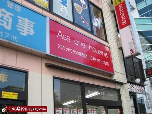 ass everybody house one store