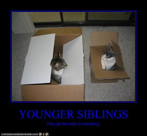YOUNGER SIBLINGS They get the best of everything.