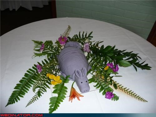 armadillo cake,armadillo-grooms-cake,crazy groom,Dreamcake,eww,funny wedding photos,grooms-cake,saddest-grooms-cake-ever,surprise,weird-grooms-cake,wtf,wtf is this