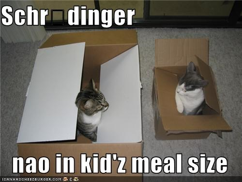Cheezburger Image 3562645248