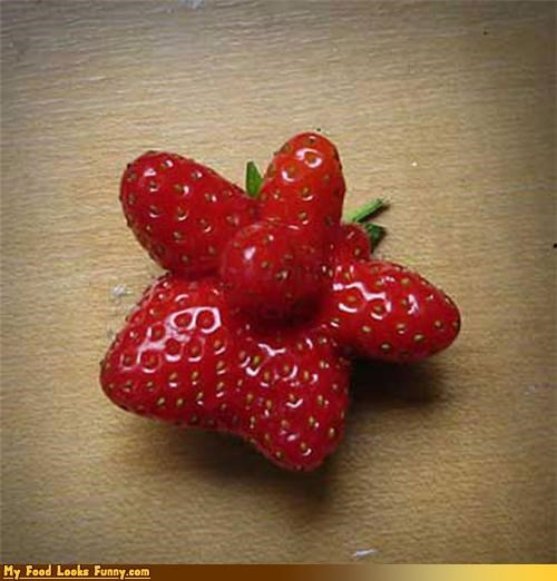 fruit fruits-veggies shaped star star fruit starberry strawberry - 3564235008