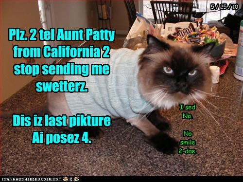 Cheezburger Image 3564659968
