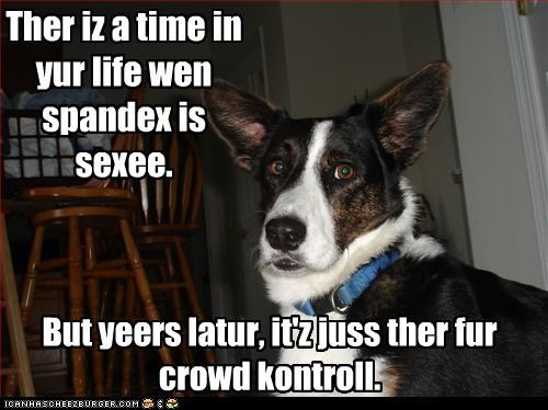 Ther iz a time in yur life wen spandex is sexee. But yeers latur, it'z juss ther fur crowd kontroll.