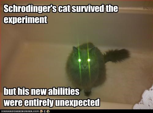 Schrodinger's cat survived the experiment but his new abilities were entirely unexpected