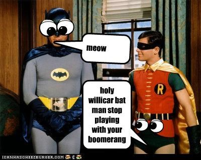 holy willicar bat man stop playing with your boomerangh meow