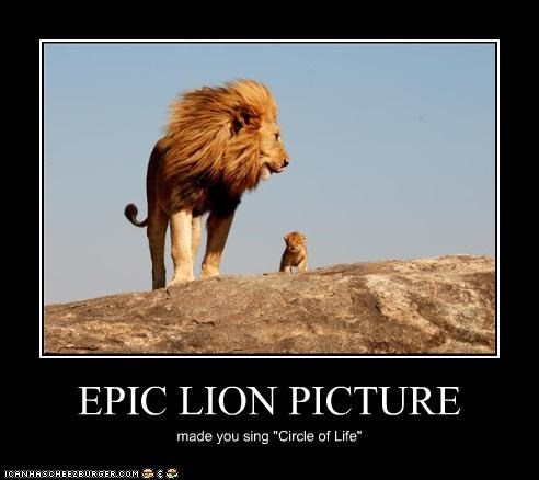 "EPIC LION PICTURE made you sing ""Circle of Life"""