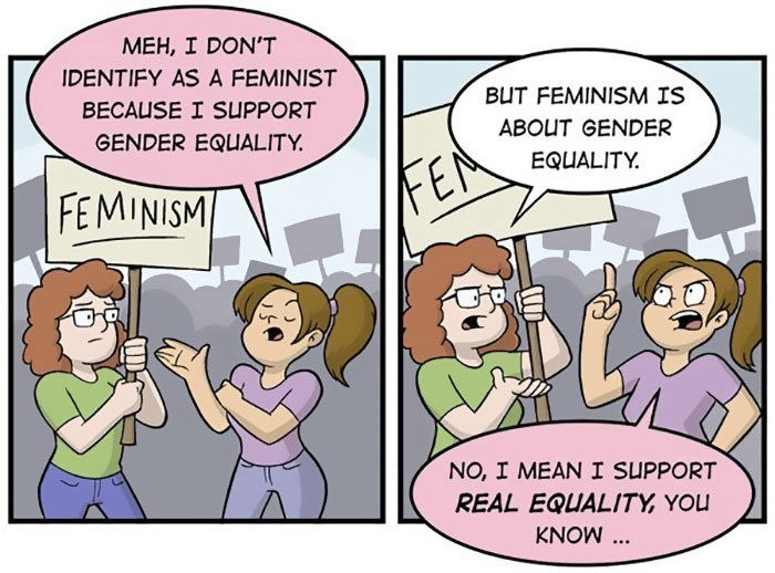 comics about gender equality vs. feminism