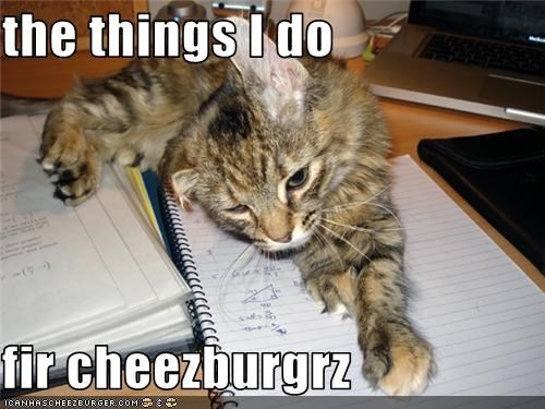 Cheezburger Image 3571288064