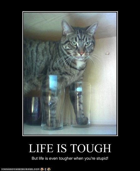 LIFE IS TOUGH But life is even tougher when you're stupid!