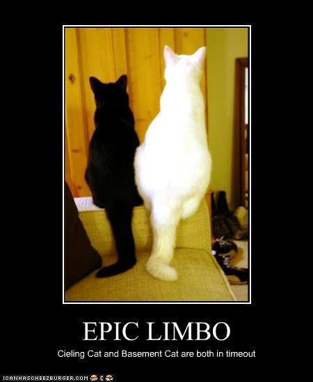 EPIC LIMBO